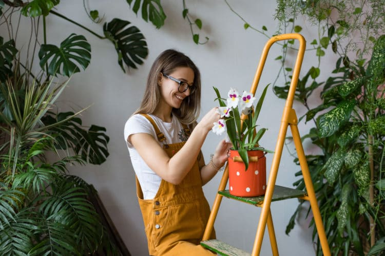 gardening for mental health boost